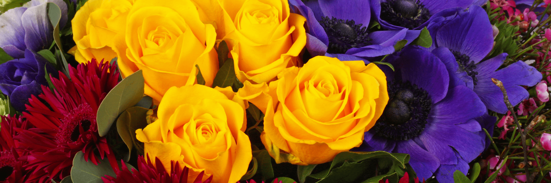 A close up image of a bright bouquet of freshly cut flowers including red gerbera and yellow roses