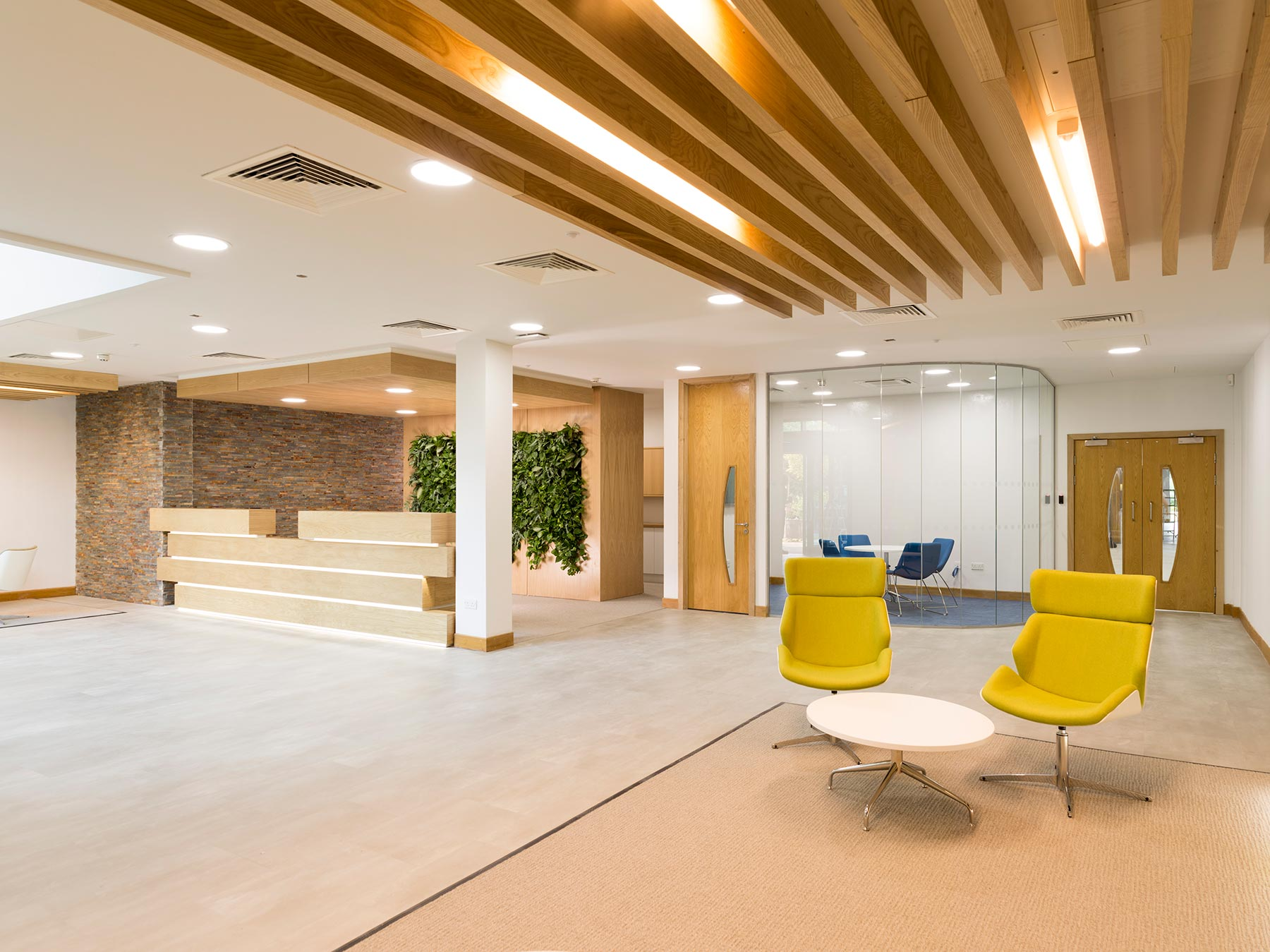 Designer office reception area with a feature living wall backdrop to the reception desk filled with lush live plants