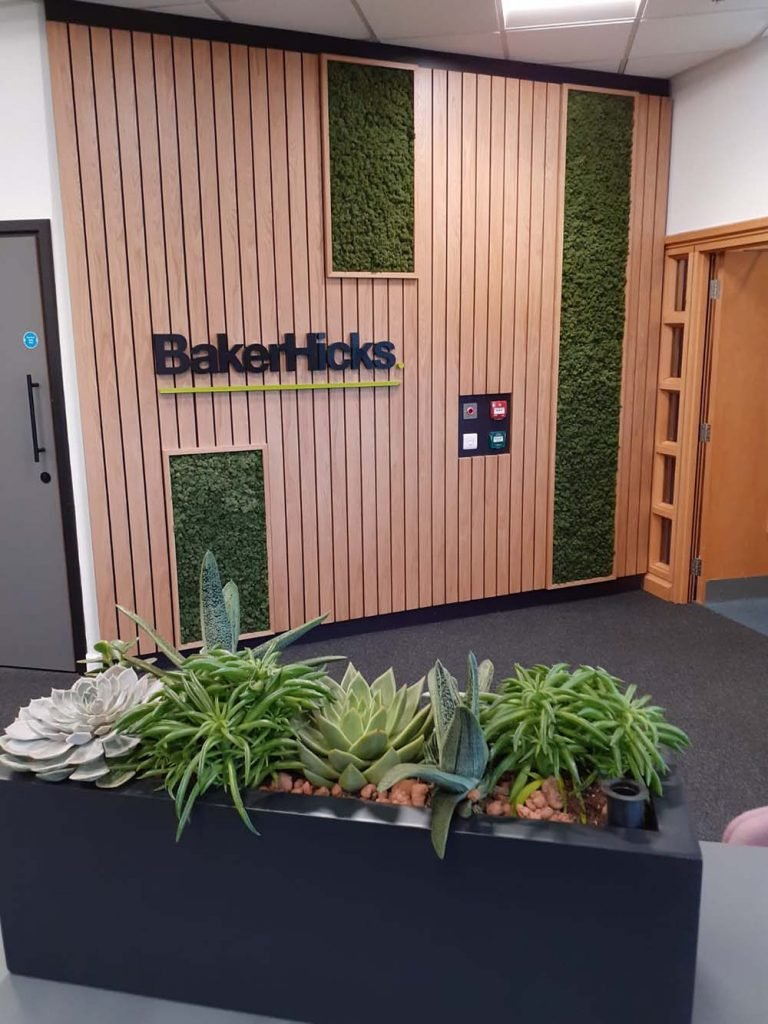 Baker Hicks office entrance feature panelled timber wall with Nordik Moss and trough in foreground filled with succulents