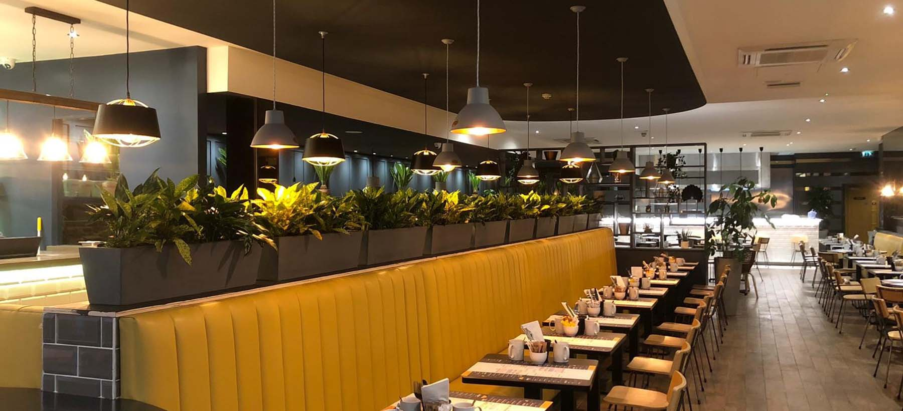 Colourful live plants in grey stone planters divide table space, provide privacy and create atmostphere in chic restaurant