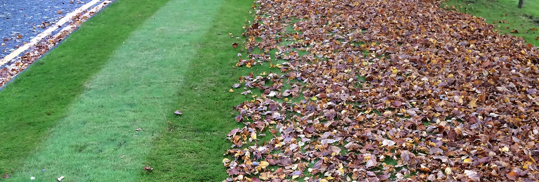 Autumn leaf clearing operation revealing lush green striped lawns as part of the Benholm exterior landscaping services