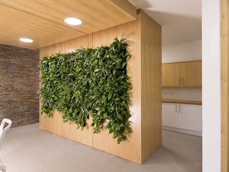 A living wall including a variety of live plants is set in a timber surround to create a stunning reception backdrop