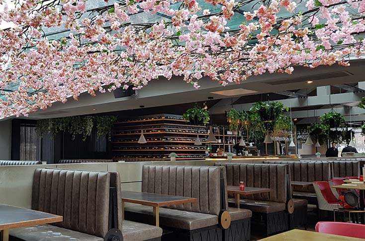Pink Cherry Blossom floral ceiling creating a canopy of petals and trailing greenery in a modern Glasgow restaurant