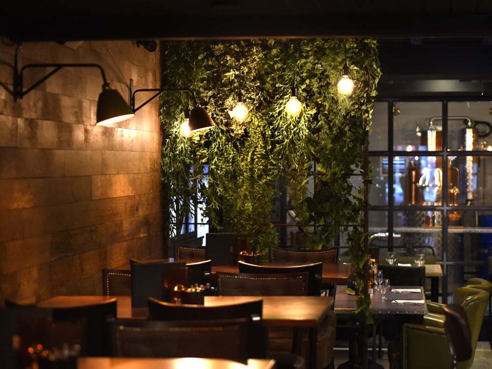 St Andrews gastropub Rogue's speakeasy style enhanced by lush trailing greenery, natural finishes, and soft lighting