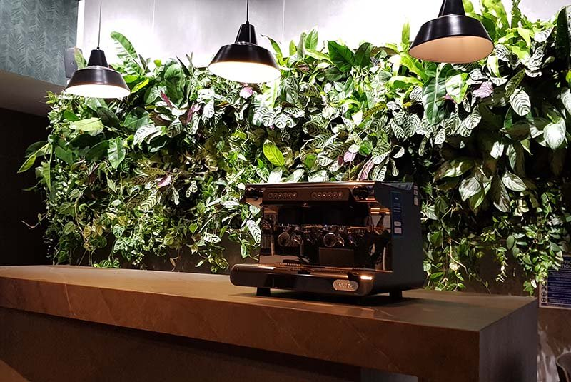Lush Enviroculture living wall planted with mixed foliage in office break out area and lit with specialist plant lighting