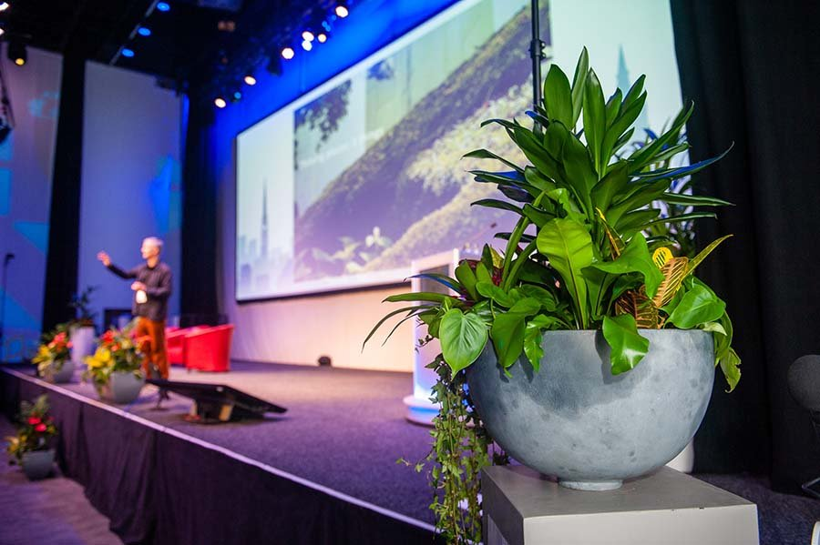 Planters and lush plants on stage at the Scottish Tourism Alliance annual conference at SECC Glasgow