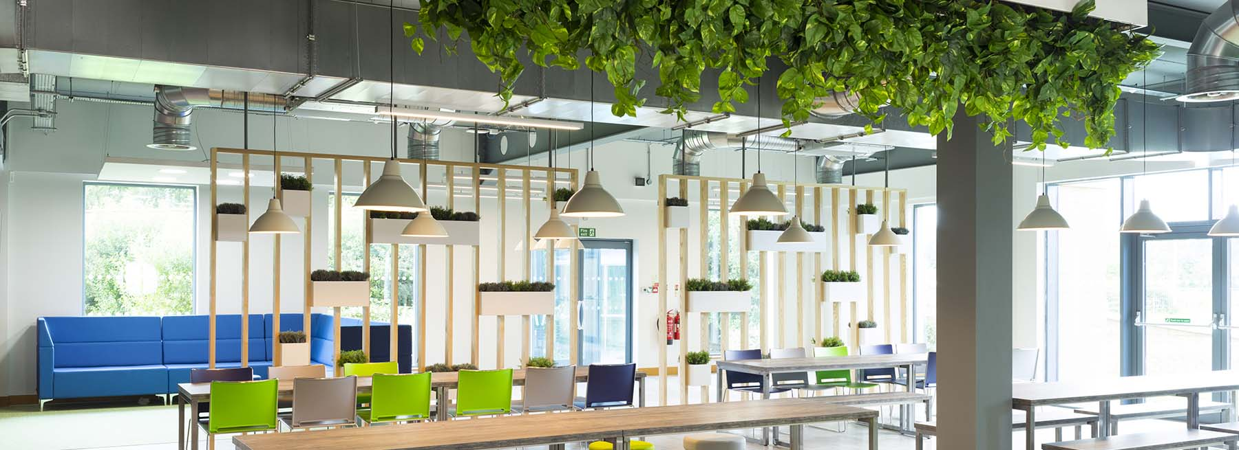 Lush artificial greenery hanging from the ceiling and planters built into timber slatted screen zone breakout space
