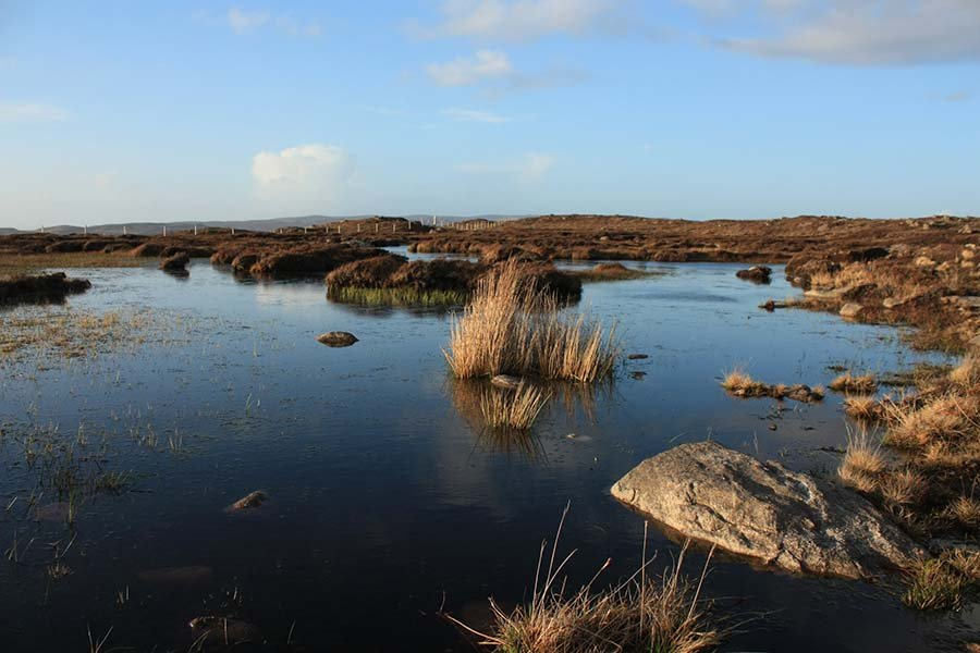 Scottish natural peatlands under a blue sky in highland Scotland showing the beauty of a peat bog habitat and ecosystem