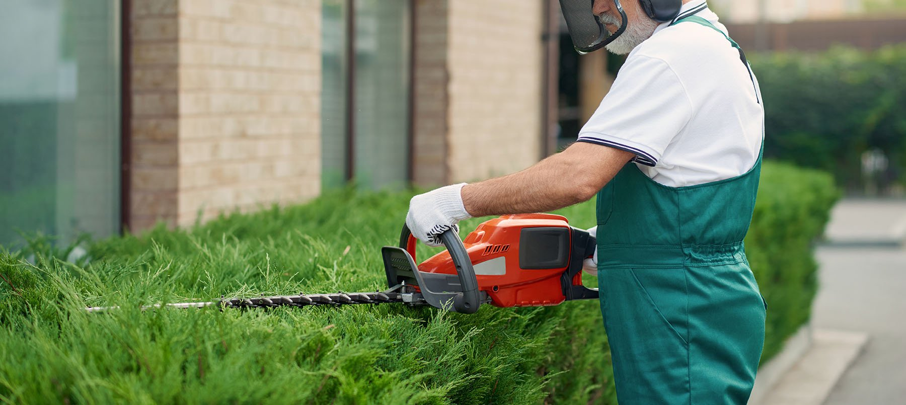 Professional exterior landscaper trimming a hedge to create a neat, well-maintained appearance to impress visitors