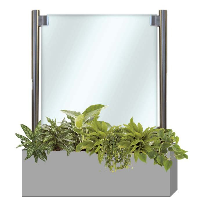 Beautiful social distancing glass screen with stainless steel posts in silver finish trough planted with lush healthy plants