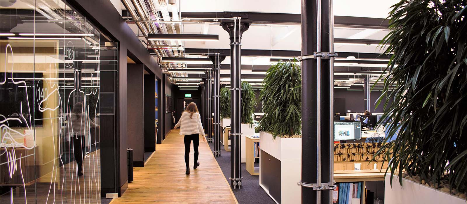 360 Architecture office with tall modern plants in cabinet top planters creating a separate walkway for staff