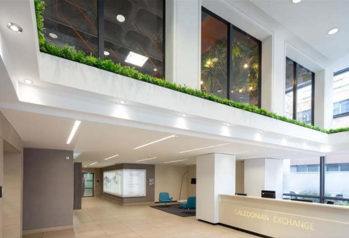 Varied lush live plants and natural materials create natural biophilic entrance to Everyman cinema Princes Square Glasgow