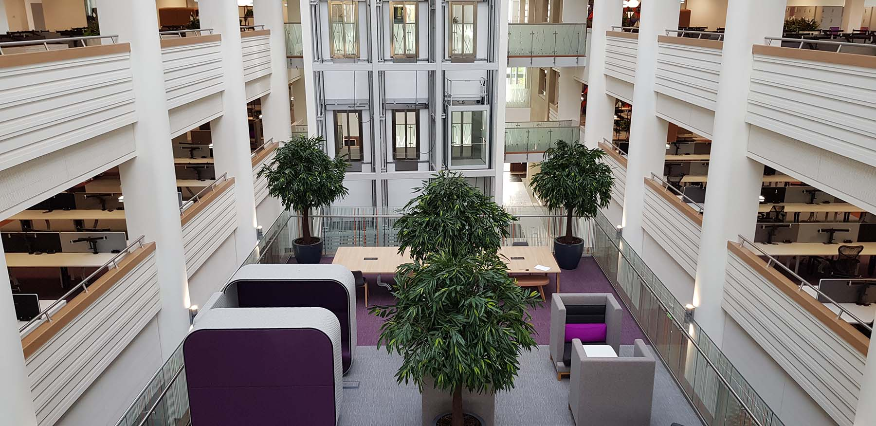 Huge artificial Ficus Alii trees create an attracitve highly visual green oasis in the centre of a modern office atrium