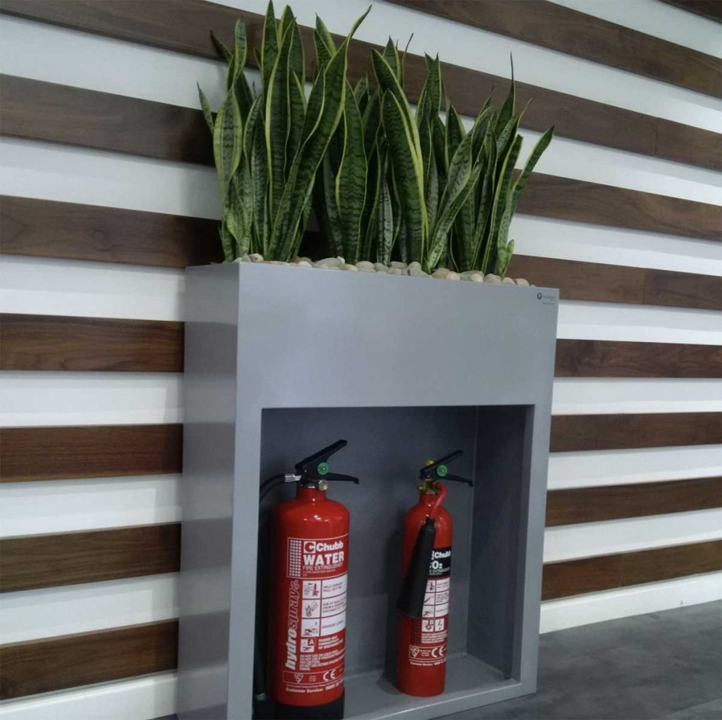 A grey fire extinguisher cabinet topped with sansevieria against a modern wood panelled wall in an office corridor