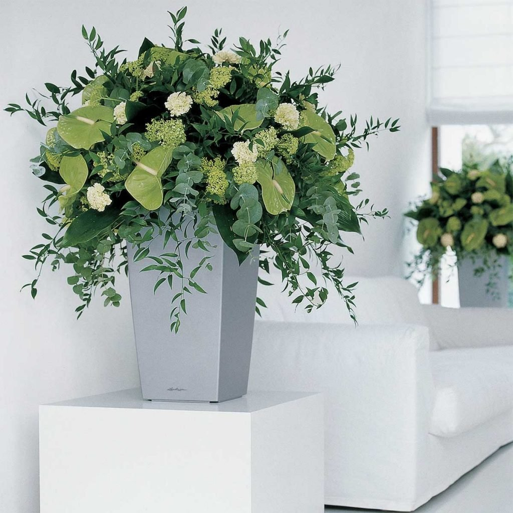 Live green tone plants and leafy foliage create an oversized floral display in a silver planter to welcome staff and guests